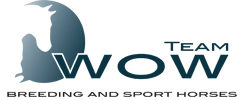 Team WOW | show jumping